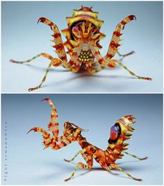 "Mantid ~ Miks' Pics ""Arachnids and  Insects"" board @ http://www.pinterest.com/msmgish/arachnids-and-insects/"