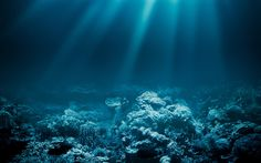 The sea is the last unexplored frontier on the earth. While we may fantasize about stumbling onto the mythic city of Atlantis or an epic struggle with a giant squid 20,000 leagues under the sea – the reality may be a bit less exciting and a lot scarier than our imaginations have led us to believe.