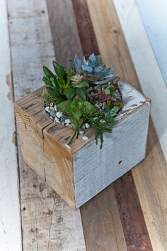 Saw these at the Portland Saturday market-- next DIY project. Large / re-BEAM Planter with Succulent Arrangement. $45.00, via Etsy. ADBusch