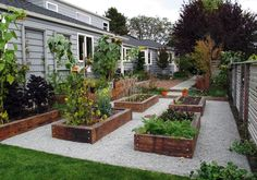We make it our mission to enrich the lives of our clients and the ecosystems they inhabit through sensitive landscape practices. Diy Garden Bed, Backyard Garden Design, Lawn And Garden, Backyard Landscaping, Potager Palettes, Garden Planter Boxes, Vegetable Garden Design, Dream Garden, Garden Planning