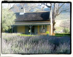 Lovely set of Self-catering Cottages to hire in Franschhoek