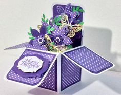 Birthday - Card in a Box by hautakangas - Cards and Paper Crafts at Splitcoaststampers