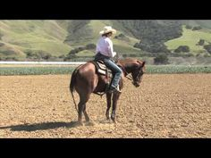 The best lead change exercise ever Horse Riding Tips, My Horse, Horse Love, Horse Tips, Riding Gear, Dressage, Reining Horses, Horse Training, Training Tips