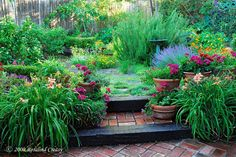 Backyard Gardens   cool design landscape