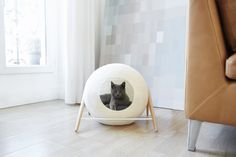 """Aiming to combine comfort for cats with a passion for design, Meyou built a collection of """"classy furniture for discerning cats"""" in 3 different shapes."""