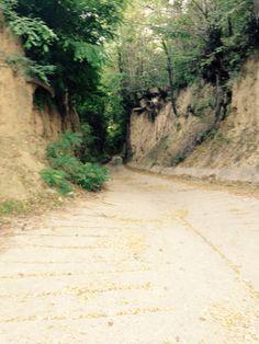 Gleba lessowa winnicą Szekszard