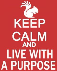 Keep Calm and Live With a Purpose #squirrel