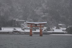 Snowy New year day