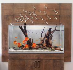 Aquarium Design Group #aquarium