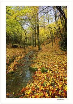 Appennino Tosco-Emiliano in Italy   See More Pictures   #SeeMorePictures