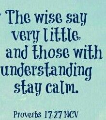 """""""He that hath knowledge spareth his words: and a man of understanding is of an excellent spirit."""" Proverbs 17:27"""