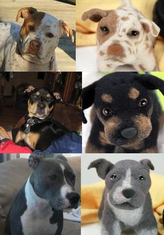 Custom dog stuffed animals, they make them from a picture you send in of your dog -- Why don't I have a little stuffed Arrow yet?!