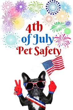 Here's how to keep your pets safe this 4th of July! And rock out to our 4th of July playlist, too!