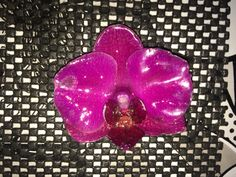 #orchids #bloom in a #jewel %brooch gel