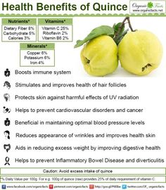 Some of the health benefits of quince include its ability to help prevent…