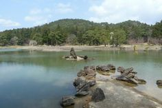 世界遺産・平泉旅行。毛越寺の浄土式庭園 World heritage site, Hiraizumi in Japan.