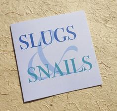 New baby boy card, slugs & snails, blue baby boy card set, pack of baby shower card, proud parents of a bouncing baby boy, congratulations