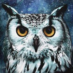 3D Galaxy Owls Nebulae Throw Pillows Case Home Sofa Office Car Cushion... ❤ liked on Polyvore featuring home, home decor, throw pillows, car interior decor, owl throw pillow, car home decor and owl home decor