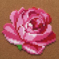 basteln mit bügelperlen vorlage rose fortgeschrittene