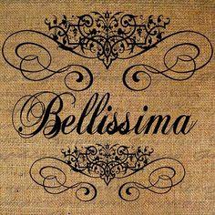 "Italian for ""Very Beautiful"""