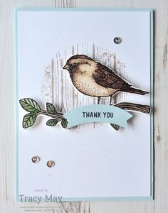 Best Birds & Birds & Blooms by Stampin' Up! Tracy May #GDP042