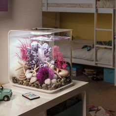 The 4 Gallon Flow Aquarium Tank is a new breed of tank. It's ideal for keeping small fish or shrimps and is compact enough to place on your desk or in a small space. Add some calm to your home or office with a biOrb flow. Betta Aquarium, Home Aquarium, Tropical Aquarium, Saltwater Aquarium, Freshwater Aquarium, Saltwater Tank, Mini Aquarium, Small Fish Tanks, Cool Fish Tanks