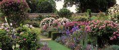 Mottisfont Abbey Rose Gardens, Hampshire, UK   18 Of The World's Most Beautiful Gardens
