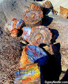 Bucket list item: Visit the Petrified Forest National Park in Arizona – beautiful! See more: www.c… Bucket list item: Visit the Petrified Forest National Park in Arizona – beautiful! See more: www. Places To Travel, Places To Go, Travel Destinations, Formations Rocheuses, Petrified Forest National Park, National Forest, Page Arizona, Arizona Travel, Arizona Trip