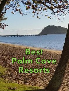 Check out the best Palm Cove Resorts and end up in a beautiful spot for an awesome vacation. Here are the top resorts in Palm Cove, Queensland. Cairns Queensland, Queensland Australia, Luxury Resorts, All Inclusive Resorts, Australia Holidays, Family Getaways, Honeymoons, Beach Holiday, Great Barrier Reef