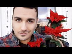 How to Make Prune Fertilize Christmas Flower Poinsettia Parrot's Beak Flower Poinsettia Poinsettia, Youtube, Nursery Trees, Plants, Youtubers, Youtube Movies