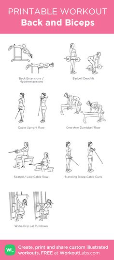 Back and Biceps:my visual workout created at WorkoutLabs.com • Click through to customize and download as a FREE PDF! #customworkout
