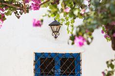 Fotógrafo: Katia Dasí Horchata, Planter Pots, El Paso, Doors, Traditional Homes, Flooring, Tiles