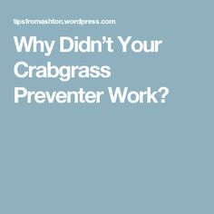 Why Didn't Your Crabgrass Preventer Work?