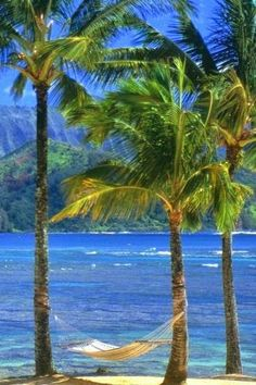 Kauai Beach....I could lay out there all day!