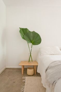 Minimalistic styled bedroom with some green leafs, they are beautiful and it's a simple way of adding some life to your bedroom