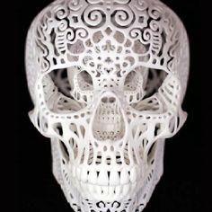 3D printed skull sculpture — a Kickstarter project