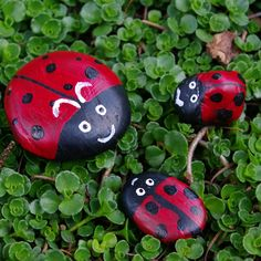 ladybug painted stones