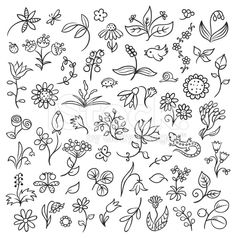 Floral Design Elements Outlines royalty-free stock vector art