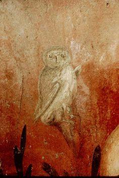 Fresco from Pompeii, owl in a small garden Roman, 1st century