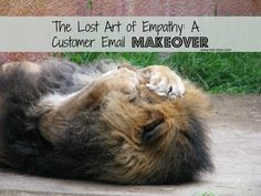 """SHOW EMPATHY! Enjoy this """"email makeover"""" of how one online shop's horrible customer service email exchange could have turned me into a raving fan instead - and how you can avoid this."""