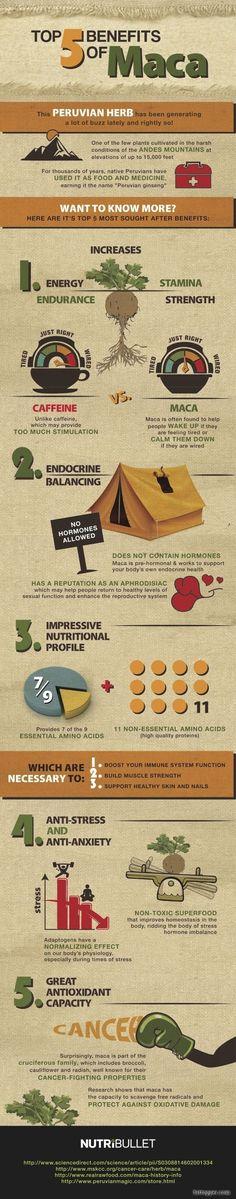 Top 5 Benefits of Maca. #infographics #health #wellness