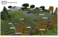 Micro Perennial Farm