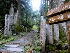 Hiking Mount Koya Koya-san | Osaka day trip, Japan