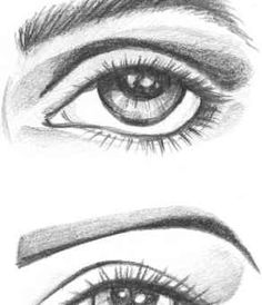 Face Anatomical Drawings-- eyes face hands legs feet