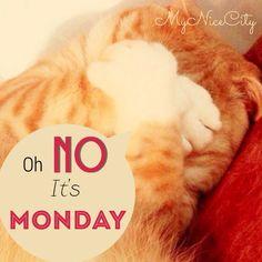 Oh it's Monday - MyNiceCity