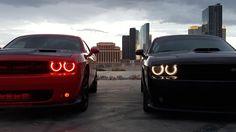 Twice the attitude. (Photo credit: Melina C.) #ThatsMyDodge  #Dodge #Challenger #DodgeChallenger #CarsofInstagram #CarGram #InstaAutos #InstaCars #CarSelfie #CarPorn #MuscleCar