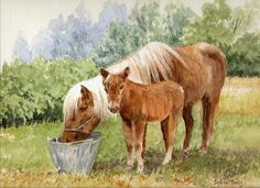 Waiting Patiently. A  watercolour by Sylvia Twiss