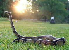 serpiente pitón...i need one =P