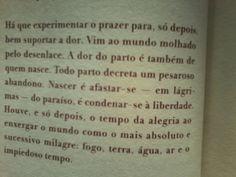 """Trecho de """"Vermelho Amargo"""" de Bartolomeu Campos de Queiros."""
