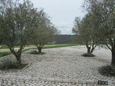 Santarém Alcobertas Terra Chã Serra Aire e Candeeiros centro tecelagem portugal natureza campo cor branca promenades Portuguese pavement